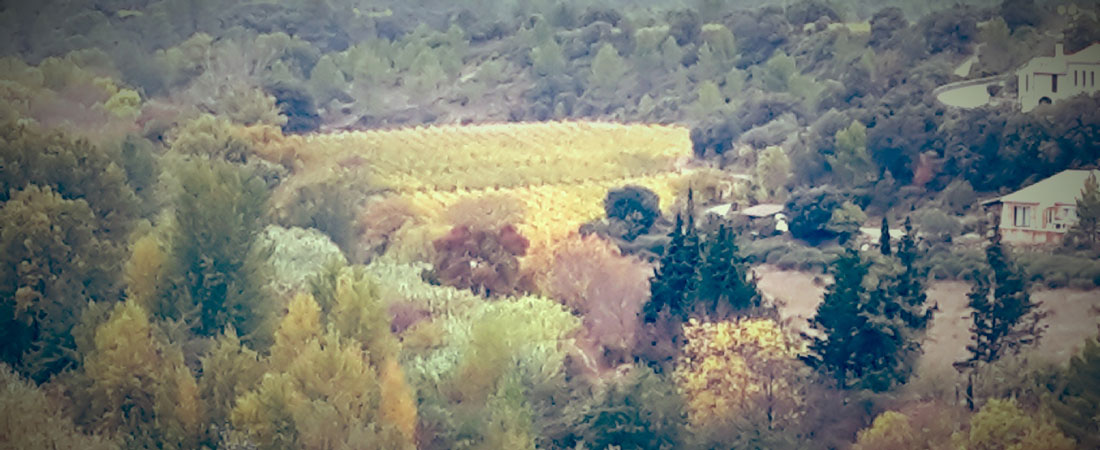 chambres d'hôtes Carcassonne Le Roc sur l'Orbieu