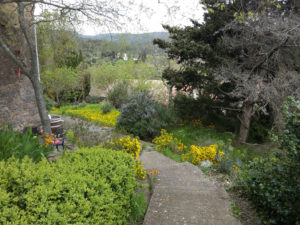jardins-maison-le-chemin-de-ronde-le-roc-sur-l'orbieu-location-vacances-entre-Carcassonne-et-Narbonne